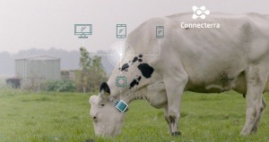 IoT trong chăn nuôi gia súc